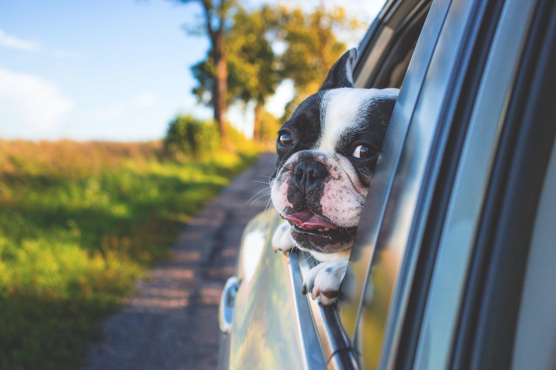 ¿Sabías qué hay componentes de tu coche con fecha de caducidad?